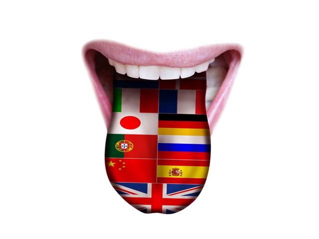 studia limba